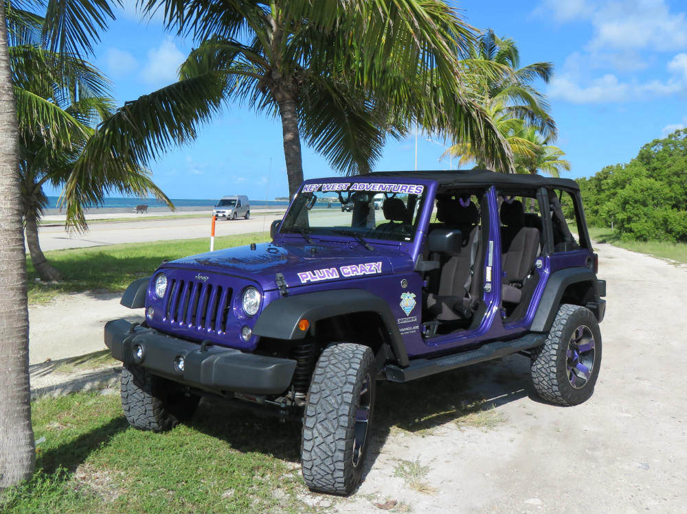 "Lifted Wrangler ""Plum Crazy"""